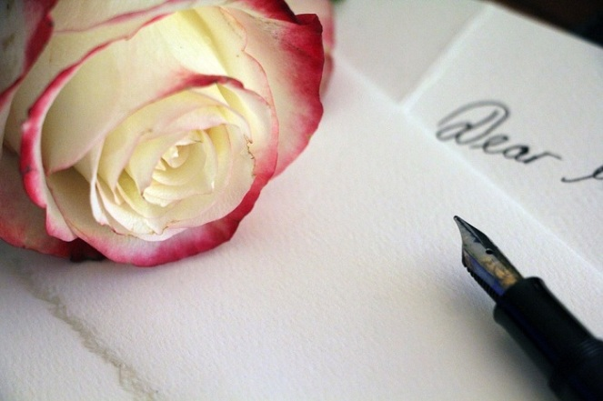 pale-rose-1452656_960_7202